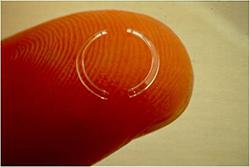 Closeup of an Intact on a Finger